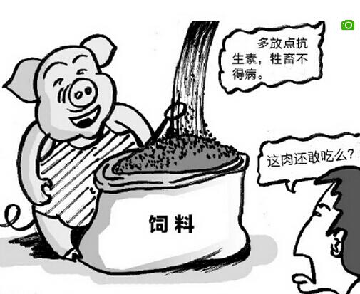 猪饲料抗生素